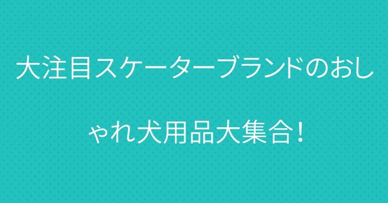 大注目スケーターブランドのおしゃれ犬用品大集合!