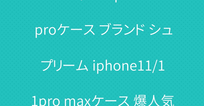 ルイヴィトン iphone11 proケース ブランド シュプリーム iphone11/11pro maxケース 爆人気