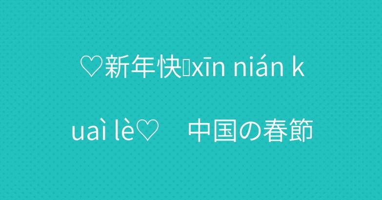 ♡新年快乐xīn nián kuaì lè♡ 中国の春節