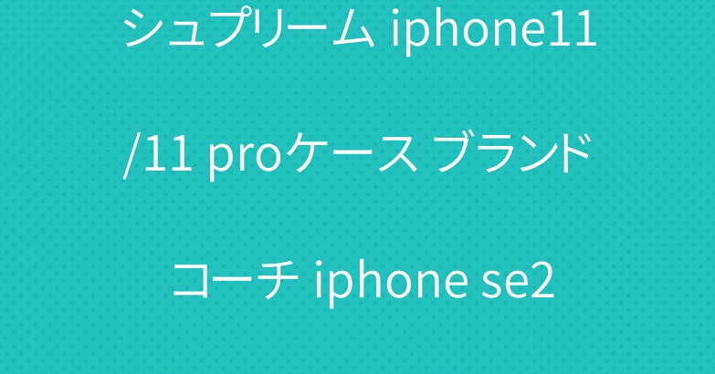 シュプリーム iphone11/11 proケース ブランド コーチ iphone se2/12プロ手帳型カバー