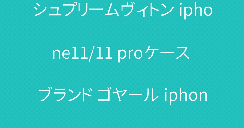 シュプリームヴィトン iphone11/11 proケース ブランド ゴヤール iphone se2/12手帳型カバー