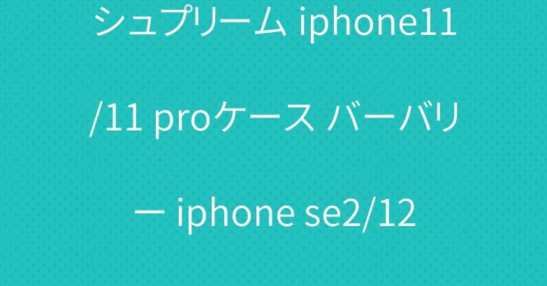 シュプリーム iphone11/11 proケース バーバリー iphone se2/12プロ手帳型カバー お洒落