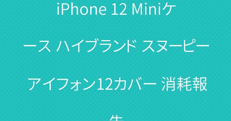 iPhone 12 Miniケース ハイブランド スヌーピー アイフォン12カバー 消耗報告