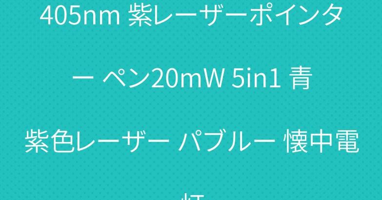 405nm 紫レーザーポインター ペン20mW 5in1 青紫色レーザー パブルー 懐中電灯