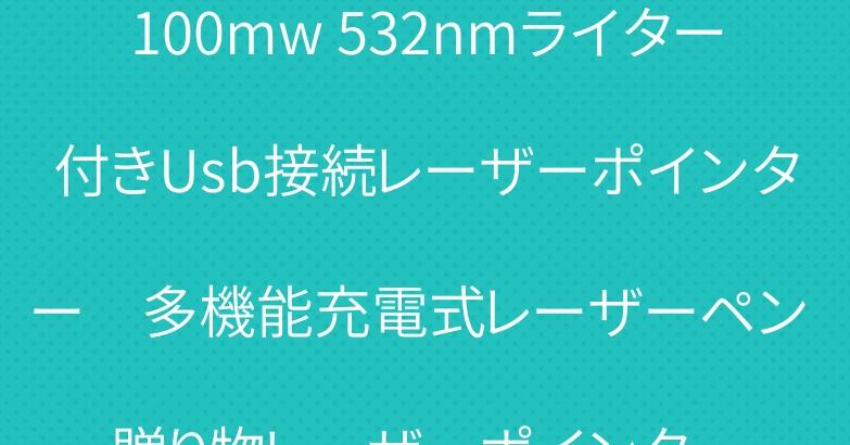 100mw 532nmライター付きUsb接続レーザーポインター 多機能充電式レーザーペン 贈り物レーザーポインター