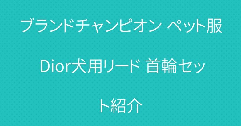 ブランドチャンピオン ペット服 Dior犬用リード 首輪セット紹介