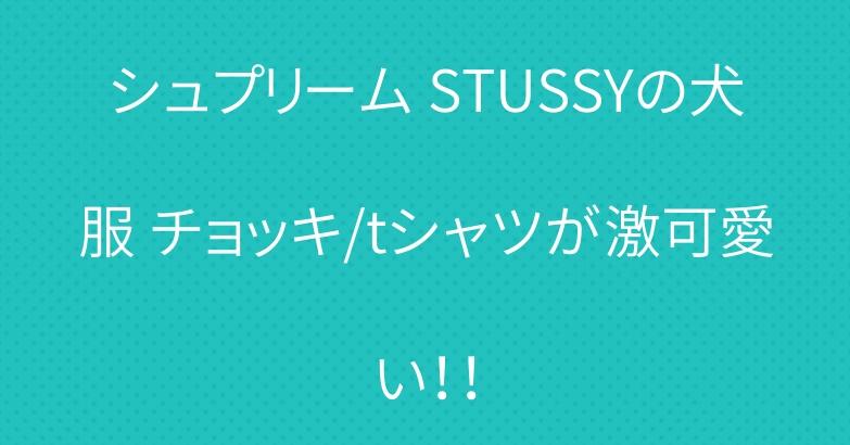 シュプリーム STUSSYの犬服 チョッキ/tシャツが激可愛い!!